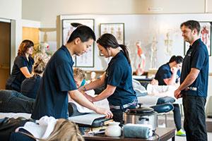 Massage in Christchurch nz